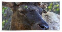 Elk Chuckle Hand Towel