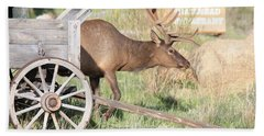 Elk Drawn Carriage Bath Towel
