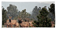 Hand Towel featuring the photograph Elk In The Snowing Open by Barbara Chichester