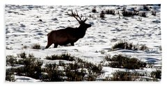 Elk Silhouette Bath Towel by Sharon Elliott