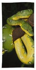 Emerald Tree Boa Amazonia Bath Towel