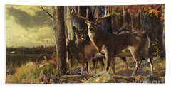 Eminence At The Forest Edge Hand Towel by Rob Corsetti