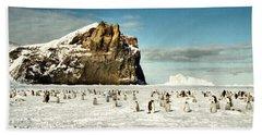 Emperor Penguin Colony Cape Washington Antarctica Bath Towel