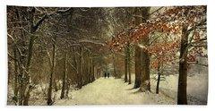 Enchanting Dutch Winter Landscape Hand Towel