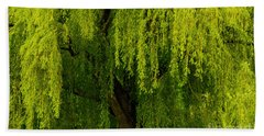 Enchanting Weeping Willow Tree  Hand Towel by Carol F Austin