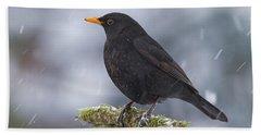 Eurasian Blackbird And Snowfall Germany Bath Towel