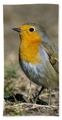 European Robin Bath Towel by Torbjorn Swenelius