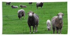 Ewes And Lambs Bath Towel by Jennifer Muller