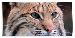 Bath Towel featuring the photograph Eyes Of A Lynx by Rosalie Scanlon