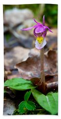 Fairy Slipper Orchid Hand Towel