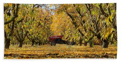 Fall In The Peach Orchard Hand Towel by Jim And Emily Bush