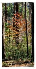 Fall In Yosemite Bath Towel