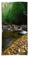 Fallen Autumn Color Leaves And Forest Hand Towel