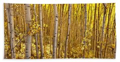 Hand Towel featuring the photograph Fall's Golden Light by Steven Reed