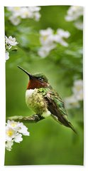 Fauna And Flora - Hummingbird With Flowers Hand Towel by Christina Rollo