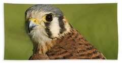 Hand Towel featuring the photograph female American Kestrel by Doug Herr