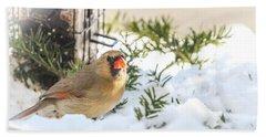 Female Cardinal At The Feeder In Winter Bath Towel