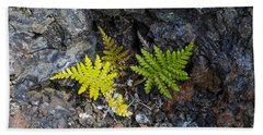 Ferns In Volcanic Rock Bath Towel