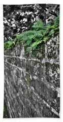 Ferns On Old Brick Wall Hand Towel