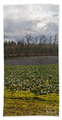 Hand Towel featuring the photograph Field Of Color 2 by Belinda Greb