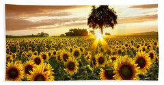 Fields Of Gold Hand Towel by Debra and Dave Vanderlaan