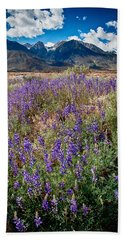 Fields Of Lupine Hand Towel
