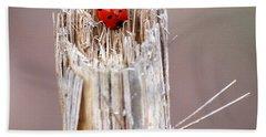 Fine Art- Ladybird Hand Towel