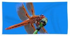 Flame Skimmer #2 - Dragonfly Bath Towel