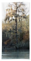 Hand Towel featuring the photograph Flint River 30 by Kim Pate
