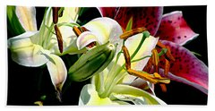 Hand Towel featuring the photograph Florals In Contrast by Ira Shander