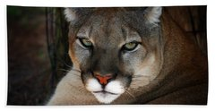 Florida Panther Bath Towel