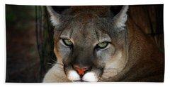 Florida Panther Hand Towel