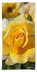 Flower-yellow Rose-delight Hand Towel by Joy Watson