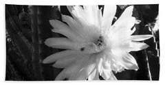 Flowering Cactus 1 Bw Bath Towel