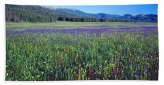 Flowers In A Field, Salmon, Idaho, Usa Hand Towel