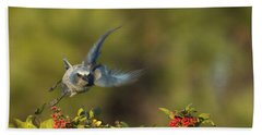 Flying Florida Scrub Jay Photo Bath Towel