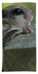Flying Squirrel Bath Towel