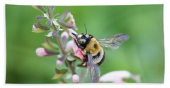 Foraging For Nectar Hand Towel