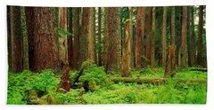 Forest Floor Olympic National Park Wa Bath Towel