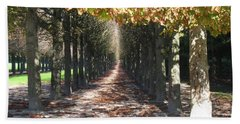 Bath Towel featuring the photograph Fountainebleau - Under The Trees by HEVi FineArt