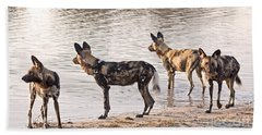Bath Towel featuring the photograph Four Alert African Wild Dogs by Liz Leyden
