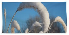 Foxtail Grass With Snow  Hand Towel