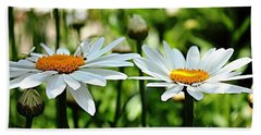 Hand Towel featuring the photograph Fresh As A Daisy by Judy Palkimas