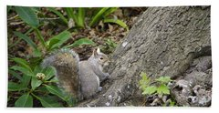 Hand Towel featuring the photograph Friendly Squirrel by Marilyn Wilson