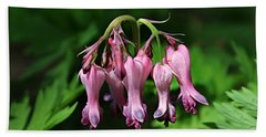 Bleeding Hearts Hand Towel by William Tanneberger