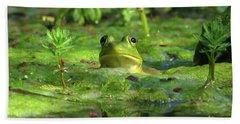 Frog Hand Towel by Douglas Stucky