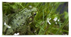 Frog On Water's Edge Hand Towel by Christina Rollo