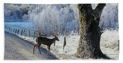 Frosty Cades Cove II Hand Towel