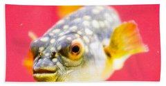 Funny Fish Hand Towel