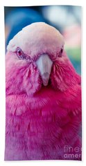 Galah - Eolophus Roseicapilla - Pink And Grey - Roseate Cockatoo Maui Hawaii Hand Towel